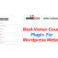 What is Visiter counter plugin