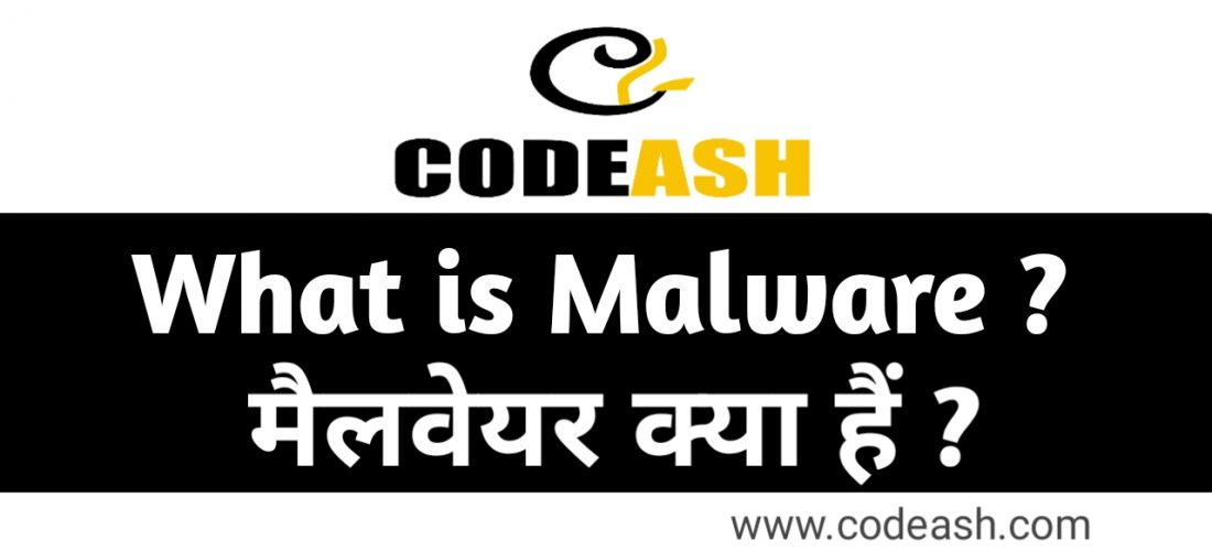 What is Malware in Hindi