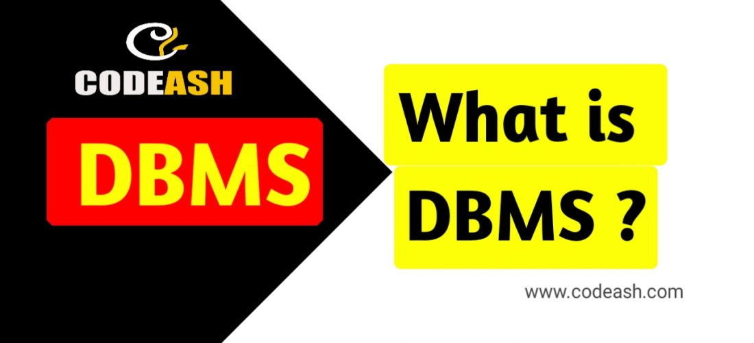 What is DBMS?