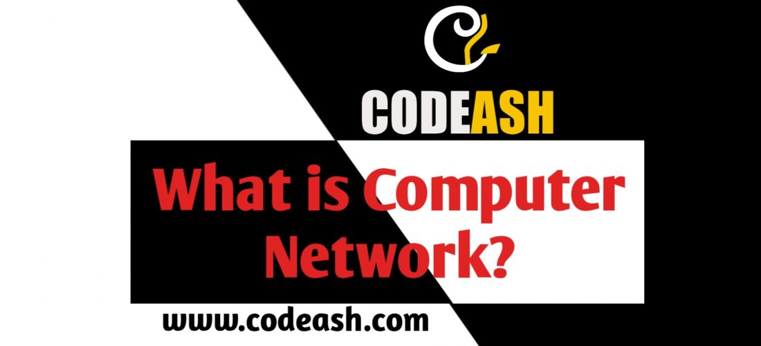 What is Computer Network ?